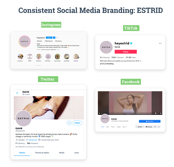 Consistent Social Media Branding: ESTRID - Screenshots from the brand's social media channels on Instagram, TikTok, Twitter, Facebook.